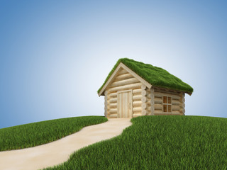 Pathway to small wooden house with grassy roof