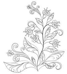 Flowers, contours