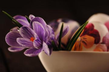 Wielkanocne pisanki i krokusy