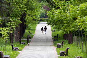 Walk in a city park