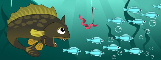 Big fish hunts