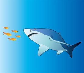 vector illustration of shark and tropical fishes