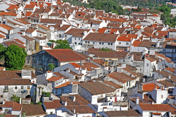 red tile roofs in medieval village