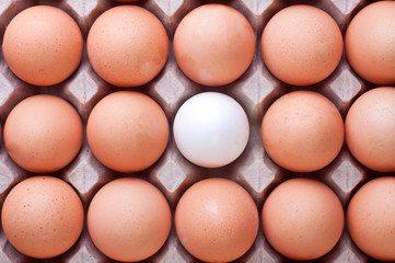 Eggs on box