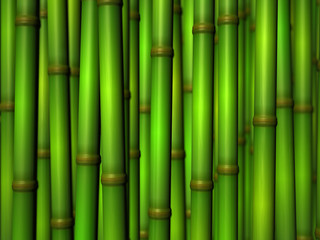 Printed roller blinds Zen bamboo