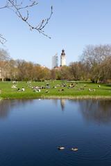 Johannapark im Frühling, Leipzig