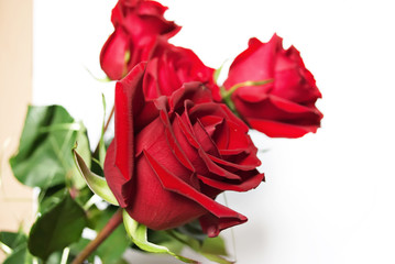 Red roses .