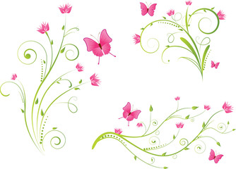 Floral elements and butterflies set