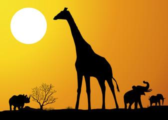 Paysage_Savane_Girafe