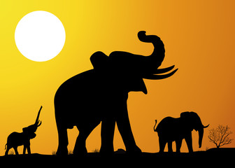 Paysage_Savane_Elephant