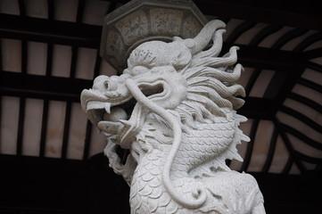 Dragon-14