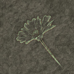 petrified flower