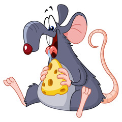 Rat eating cheese