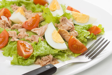Egg and tuna salad
