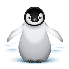 Little baby emperor penguin
