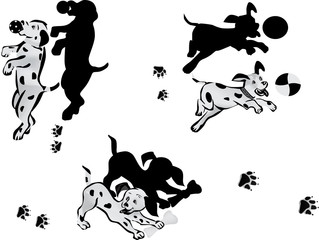 illustration with playful Dalmatian puppys