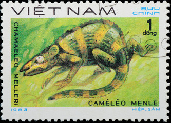VIETNAM - CIRCA 1983:  stamp - animal reptile