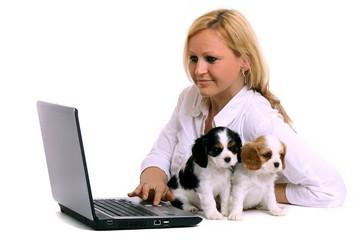 zwei Welpen und junge Frau mit Laptop