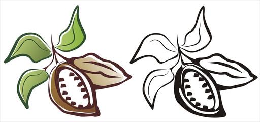 cacao symbol