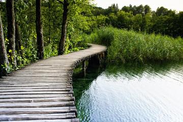 Akwen na plitvickich jeziorach w Chorwacji. Plitvickie jeziora.