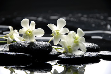 Wall Murals Spa Zen stones and white orchids with reflection