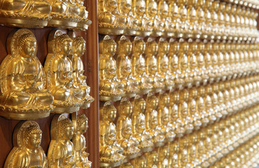 perspective of thousand buddha wall in dragon temple Thailand