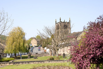 Bingley Church and Cherry Tree