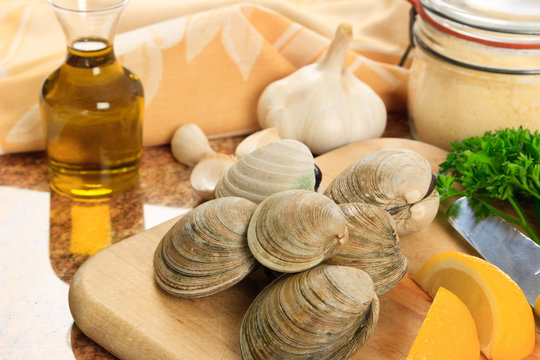 Littleneck Clams in the Kitchen