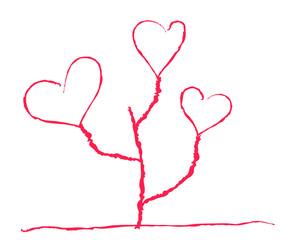 heart-shaped flower