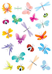 color vector butterflies set