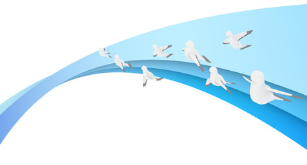 Gradation Birds Pigeon
