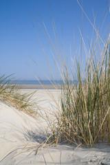 Fototapeta Dune landscape at the sea