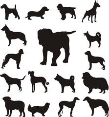 Домашние животные - собаки