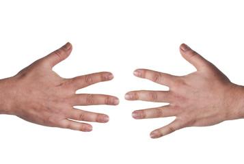 Open male hands