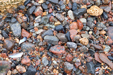 small colorful pebble on a beach