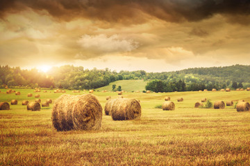Garden Poster Orange Field of freshly bales of hay with beautiful sunset
