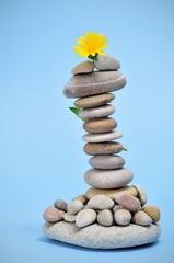 zen stones and flower