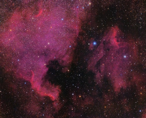 North America and Pelican Nebula