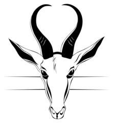 antelope head in vector