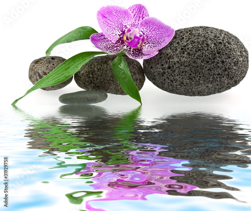 D coration zen institut massage galets et orchid e for Achat cailloux blanc