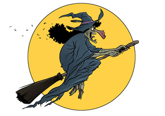 witch in broomstick colors