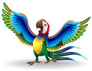 Pappagallo Ara Cartoon-Funny Macaw Parrot-Vector