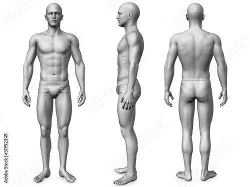 male body\