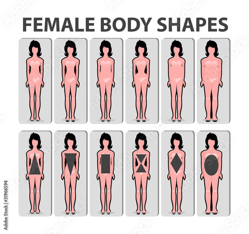 Female body shape or figure types. Woman collection. Body propor ...