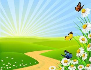 Keuken foto achterwand Vlinders nature background