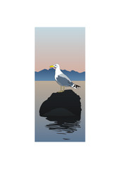 Seagull on a rock.