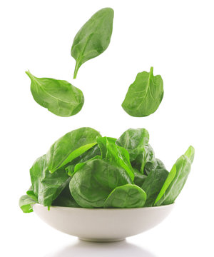 fresh spinach in a white bowl