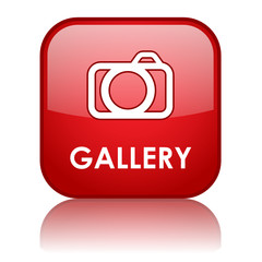 """GALLERY"" Web Button (photos pictures art view portfolio camera)"