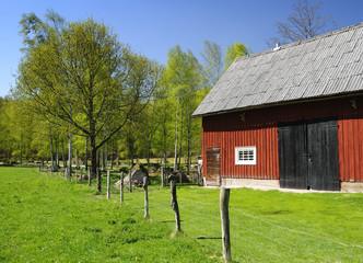 Swedish country symbols