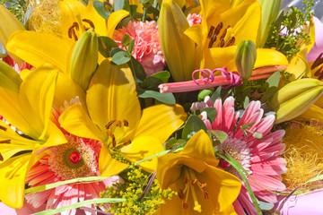 Photos illustrations et vid os de lys jaune for Amaryllis jaune